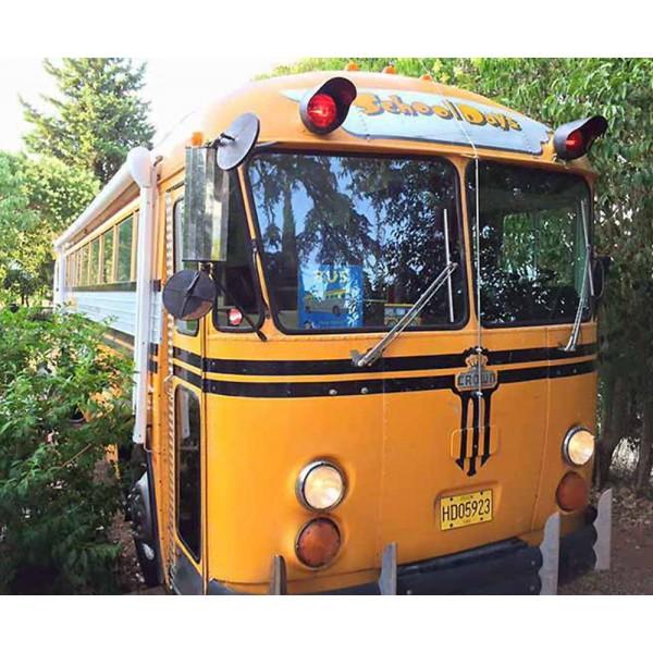 location auto retro collection school bus de 1985 am nag en camping car. Black Bedroom Furniture Sets. Home Design Ideas